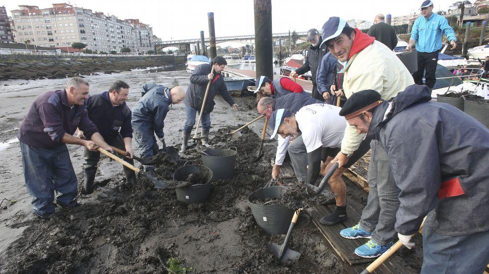 Protesta para solicitar la retirada de los lodos que ciegan el puerto deportivo de Pontevedra.