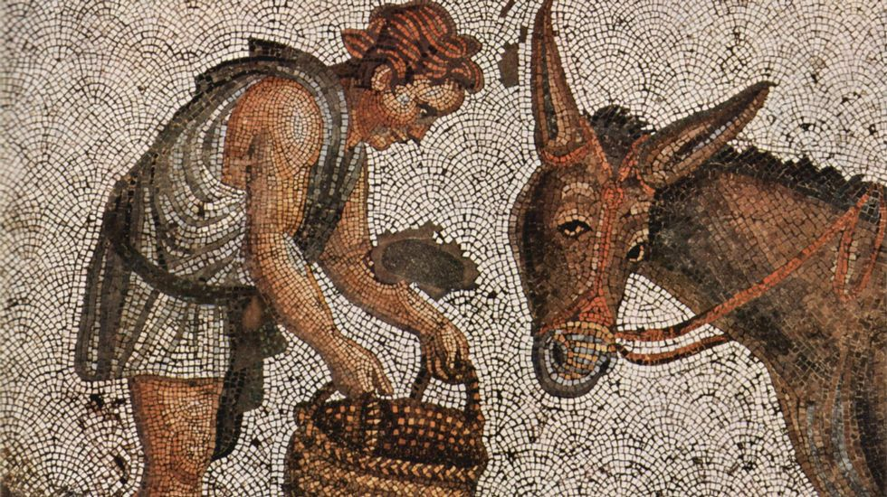 Joven alimentando a un asno. Mosaico bizantino del siglo V, que formó parte del pavimento del Gran Palacio de Constantinopla. Un metro cuadrado contiene unas 40.000 teselas (Museo de Mosaicos de Estambul)