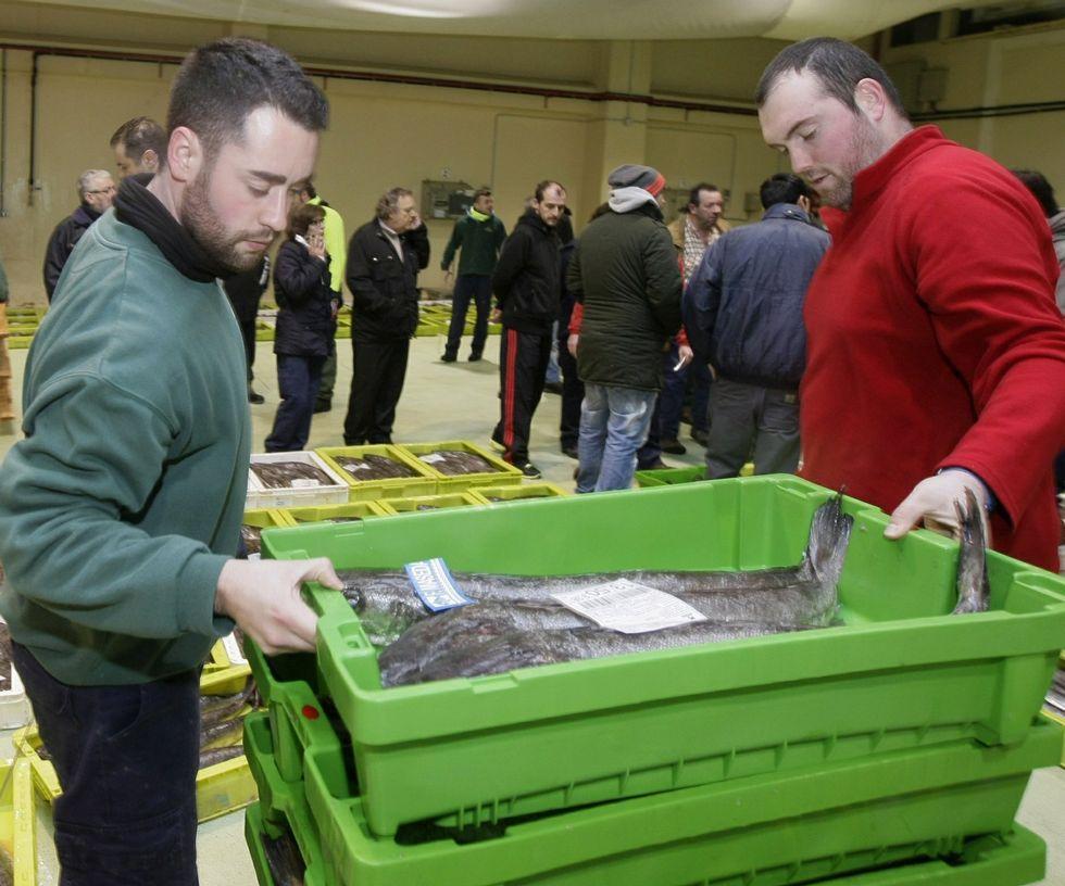 Celeiro subasta merluza del pincho certificada como pesca sostenible