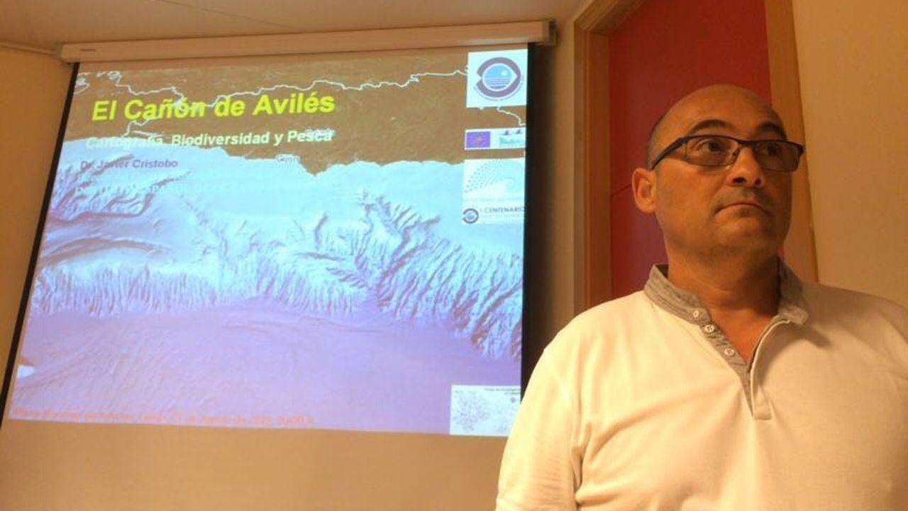 Surfear bajo la nieve más allá del círculo polar ártico.El biólogo Javier Cristobo, director del Centro Oceanográfico de Gijón