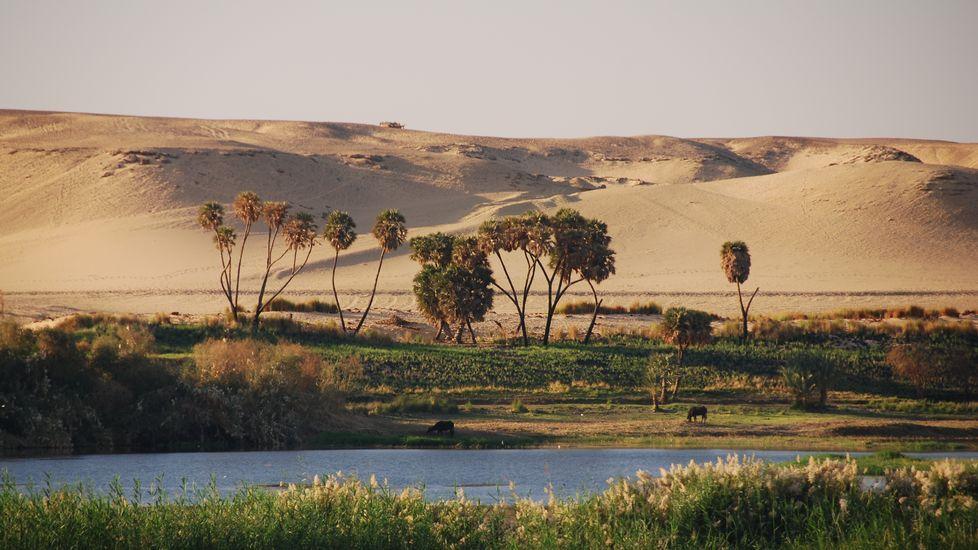 Los alumnos extranjeros de la USC, los mejores embajadores de sus países.Contraste entre las riberas del Nilo y las arenas del desierto por el que discurre