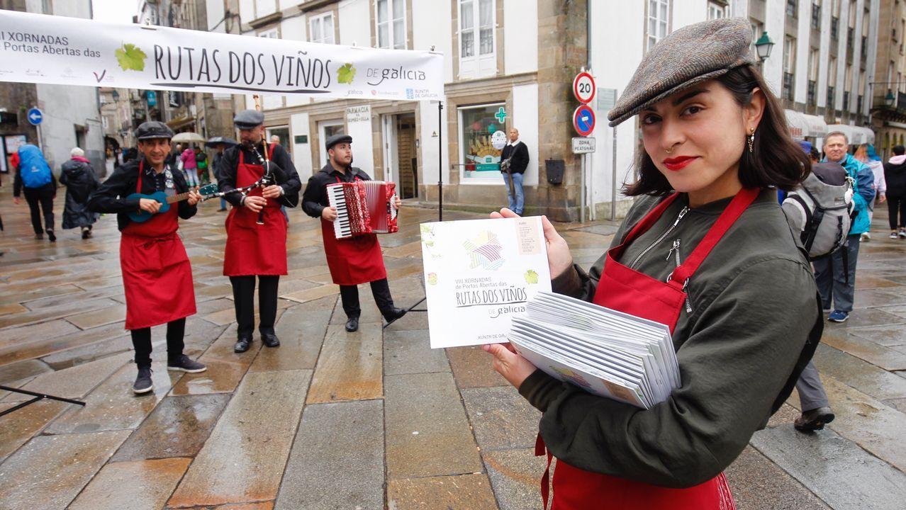 Versión gallega del «Despacito» de Luis Fonsi durante la promoción de lasRutas dos Viños
