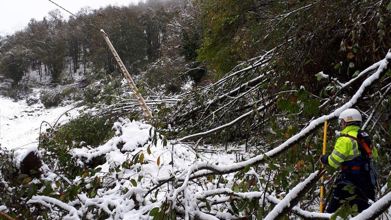 Entrega de los Premios Exceleite en Vilalba.Técnicos de EDP tratan de arreglar una avería eléctrica en medio de una gran cantidad de nieve