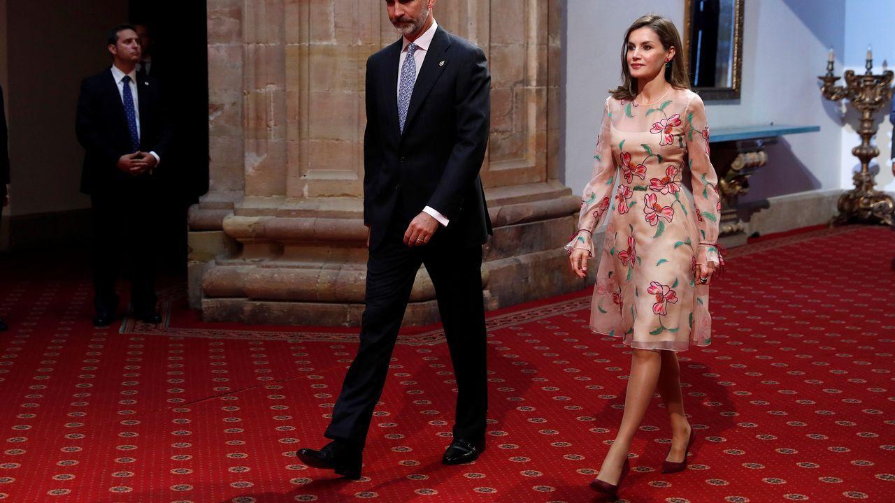 .Para la entrega de las Medallas de Asturias Letizia ha optado por un vestido floreado, de organza rosa palo con flores y hojas verdes de Carolina Herrera con un favorecedor fruncido en las mangas