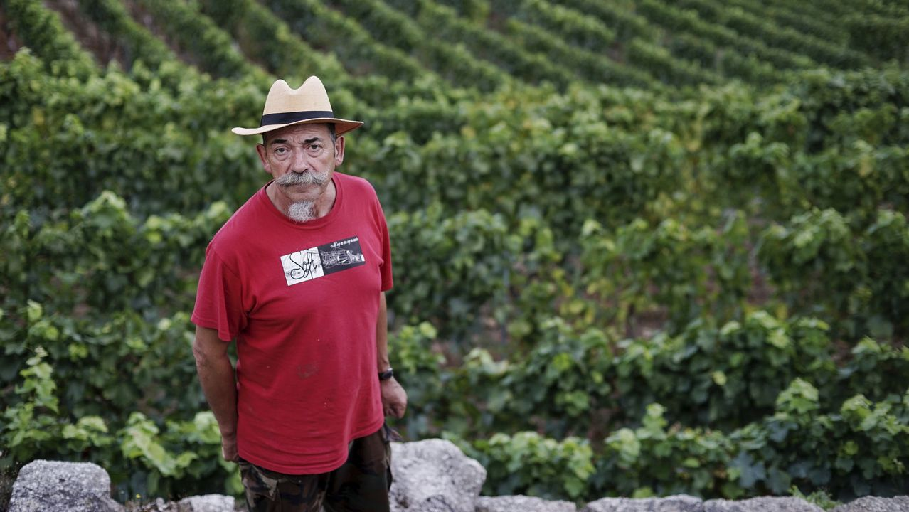 Emilio Rojo participará en la elaboración de las nuevas cosechas con la bodega de Valladolid.