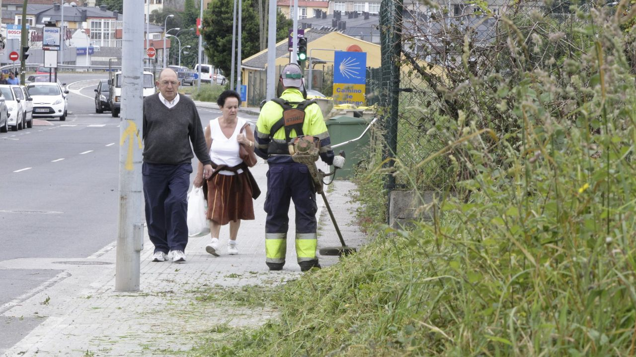 Limpieza de maleza Coruña