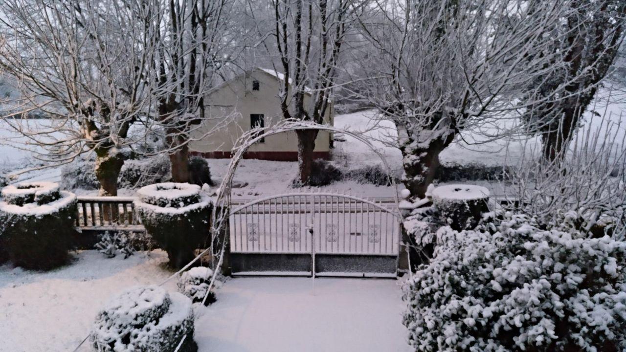 .Nieve en Curtis