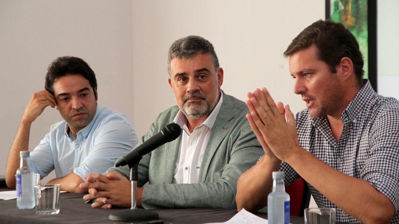 Pleno de la investidura en Vigo.Alfonso Marnotes, en el centro, como director xeral.