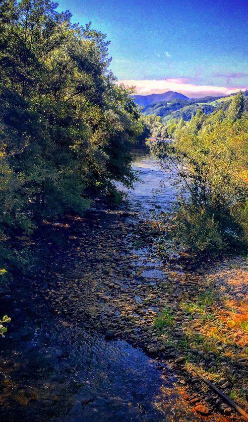 El río Narcea, a su paso por Cornellana
