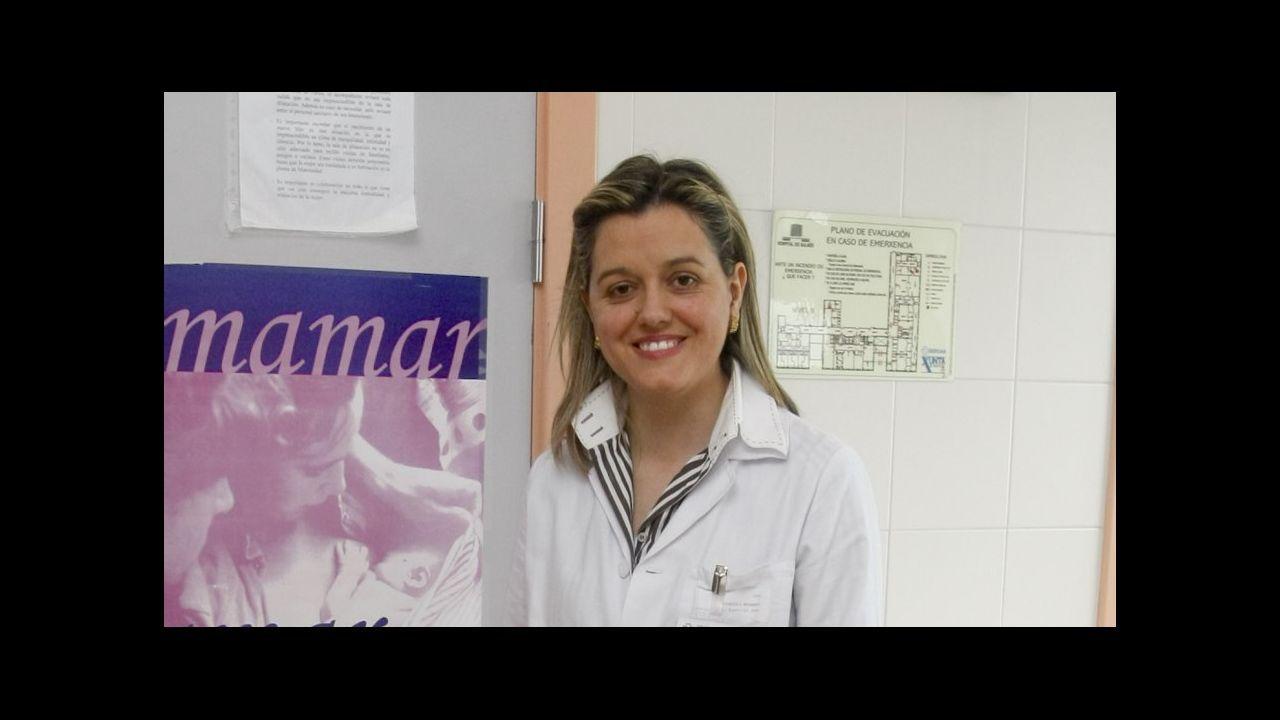 Cambados celebra el día del enoturismo.El estudio se presentó anoche en Santiago, en el Colegio Médico, a Sanidade y profesionales