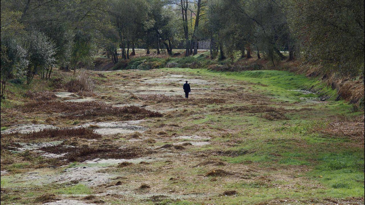 Algunos tramos del río Limia a su paso por Xinzo se llegaron a secar por completo