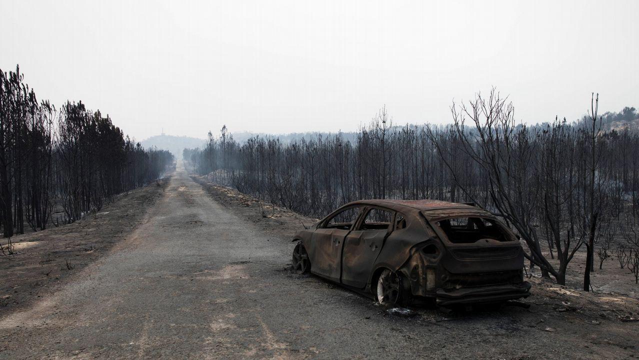 Las imágenes más impactantes del fuego en California.Juzgados de Avilés