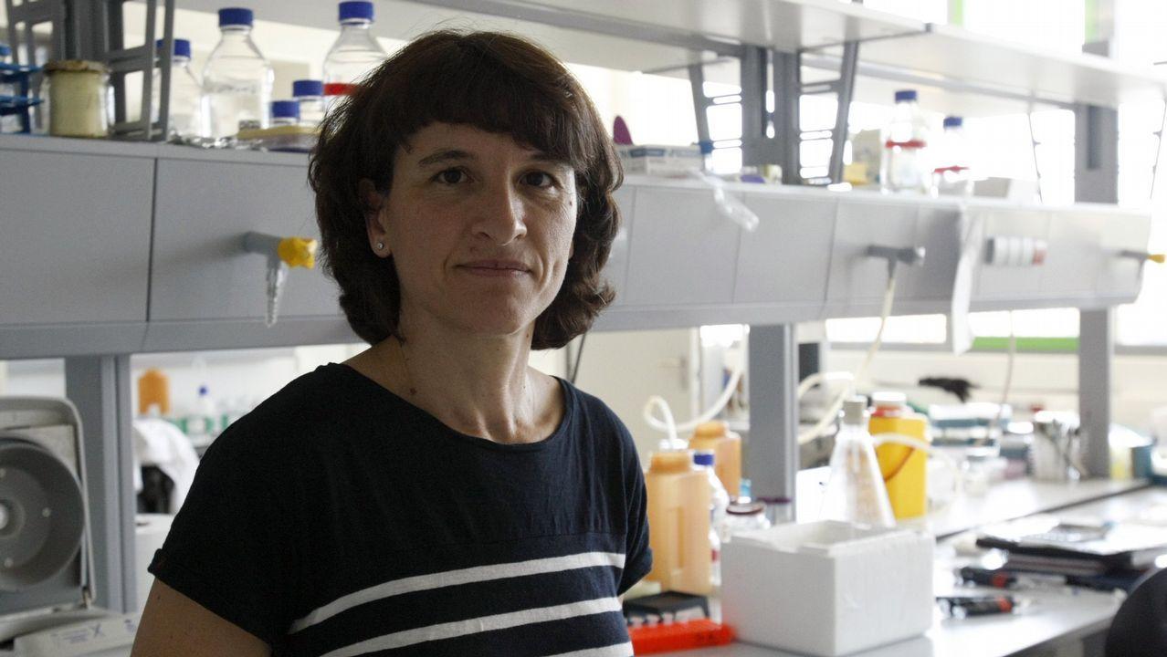 mascaraque.Elena Campos, doctora en Biociencias Moleculares y presidenta de la Asociación para Proteger al Enfermo de Terapias Pseudocientíficas