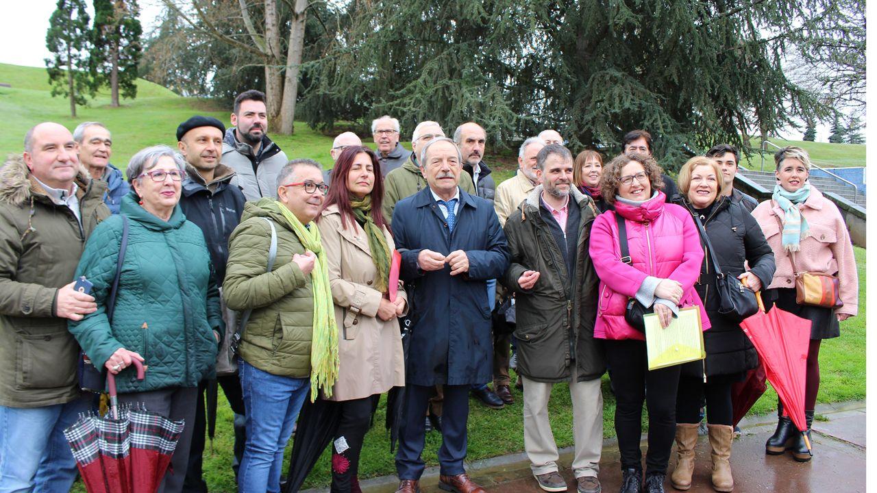 El Malamente asturiano.Imagen Equo y PSOE