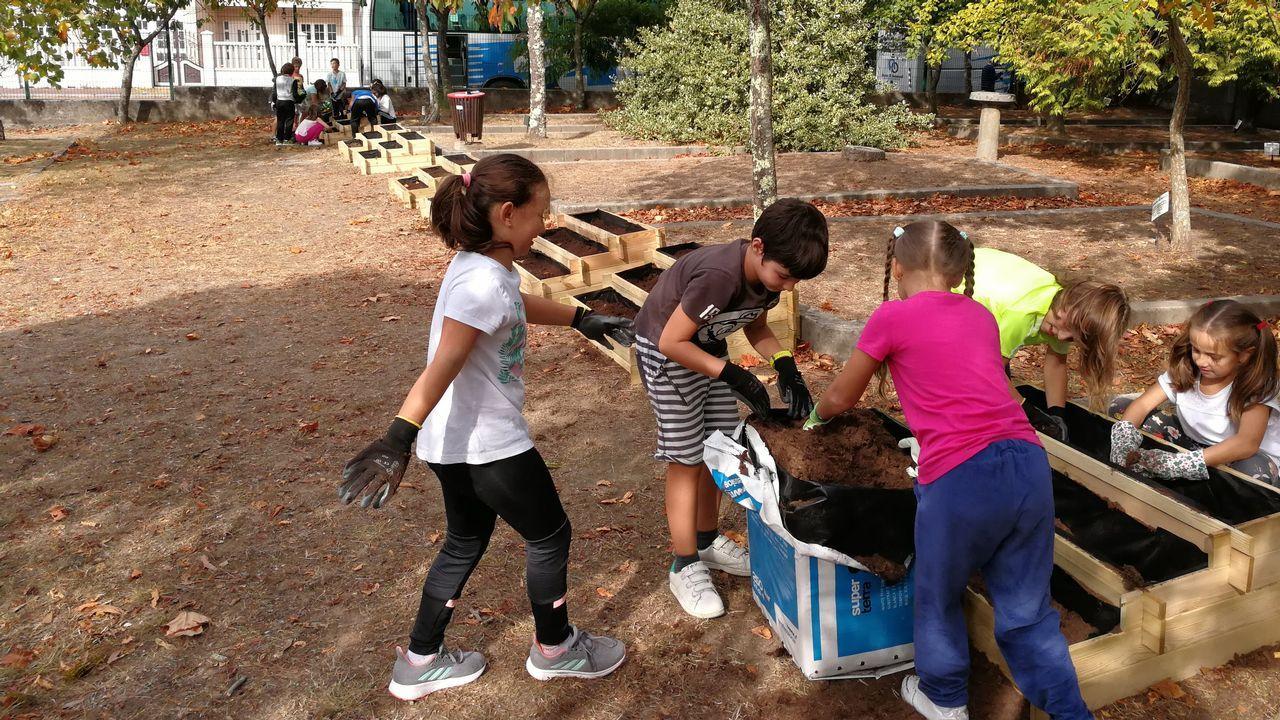 Voz Natura, agentes forestales y alumnado: ¡reforestación en Fisterra!.Planta de tratamiento de residuos de Sogama