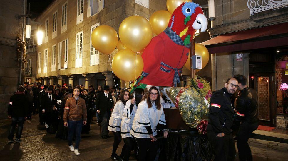 Pontevedra dice adiós al entroido