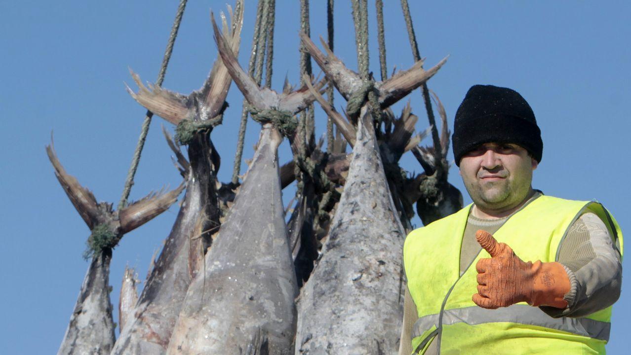 «As ameixas non son moras»: el alegato de las mariscadoras de Arousa.Un barco ecologista persiguiendo en aguas tailandesas a un buque dedicado a la pesca ilegal de merluza