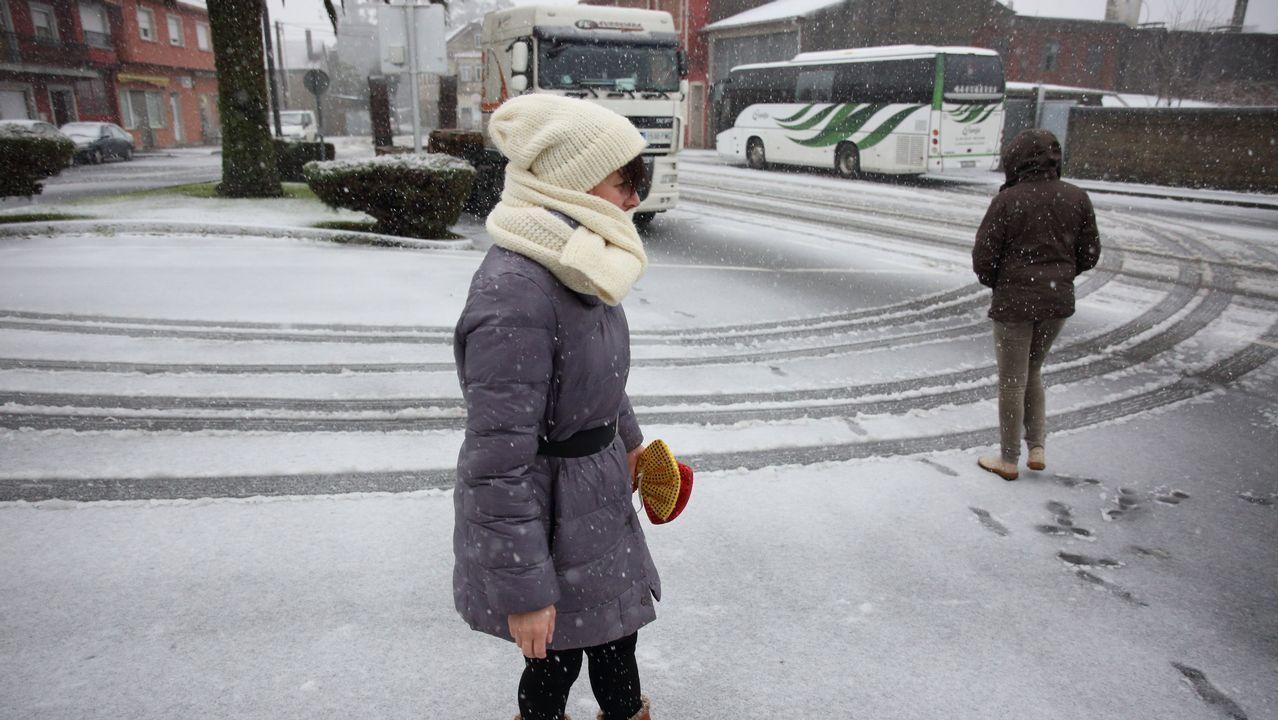 .Nieve en Cerceda