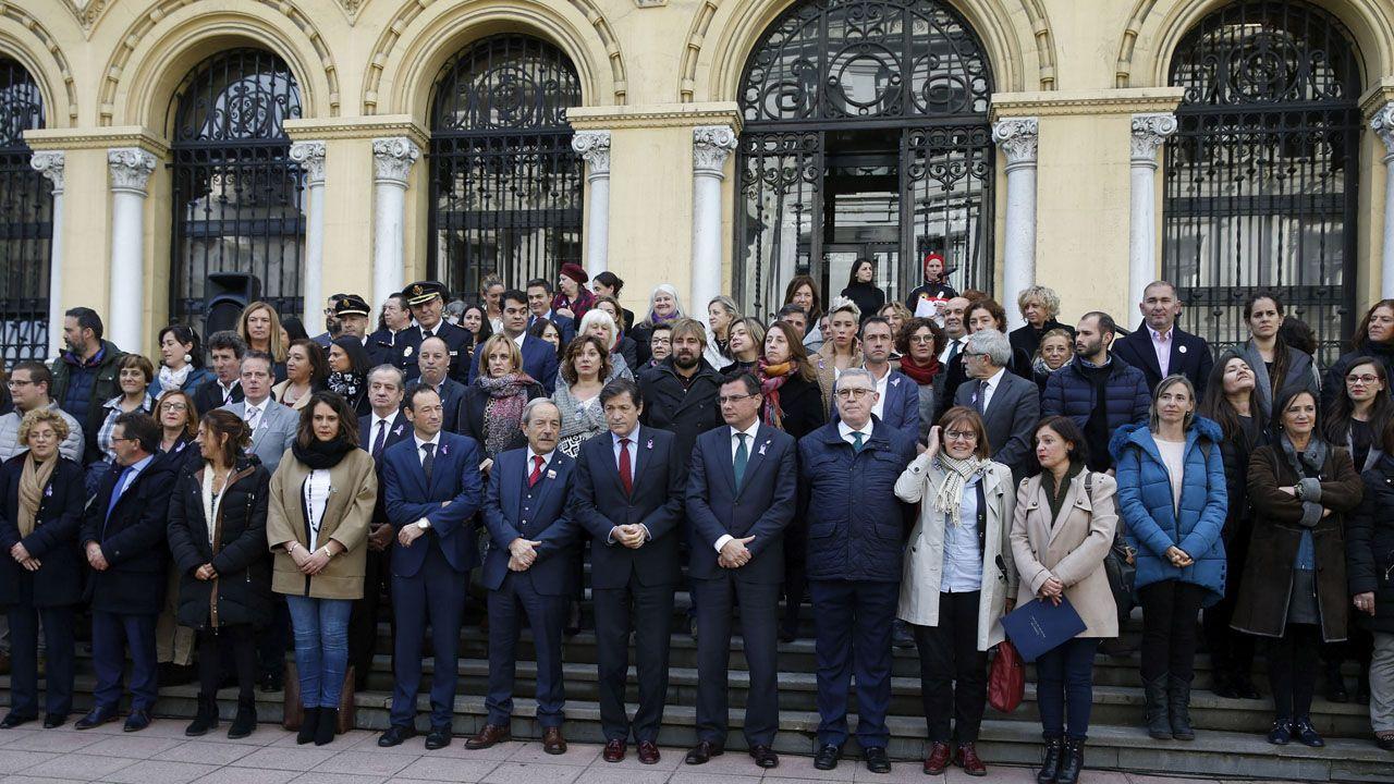 Concentración celebrada en Oviedo con motivo del Día Internacional contra la Violencia sobre las Mujeres