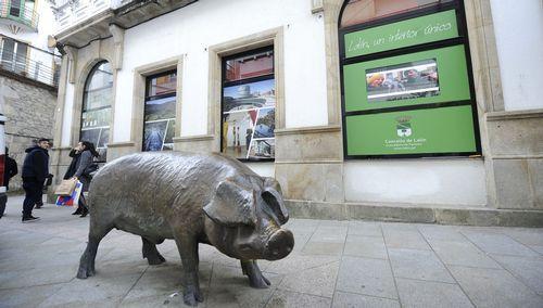HM CIOCC: el primer centro oncológico privado de Galicia.Billetes de euro