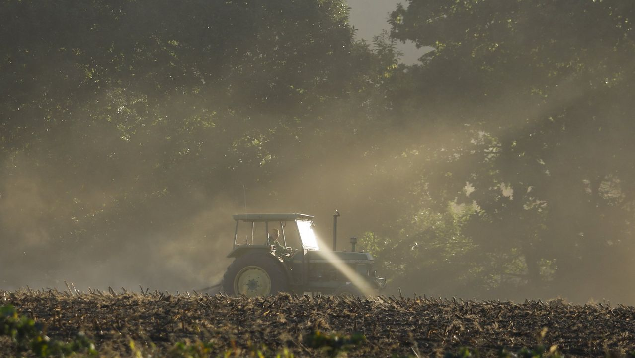 La rotura de una presa en Brasil sepulta a cientos de personas