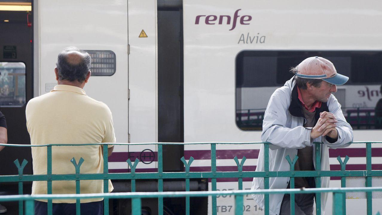 «Que nadie piense que los plazos del AVE son holgados. No podemos relajarnos».Un tren Alvia en la estación de Oviedo