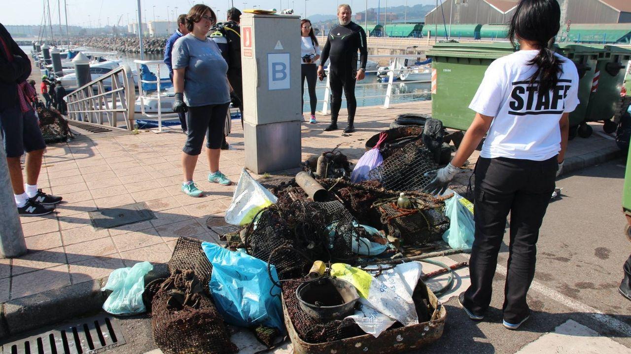 Basura recogida en una campaña de limpieza con voluntarios en el puerto de El Musel de Gijón.Basura recogida en el puerto de El Musel en 2017