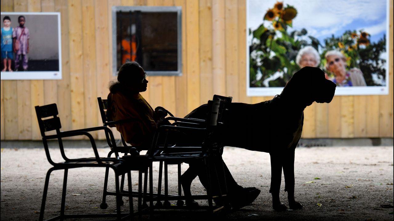 .Un hombre con un gran danés descansa en un asiento del jardín del Palacio Real de París