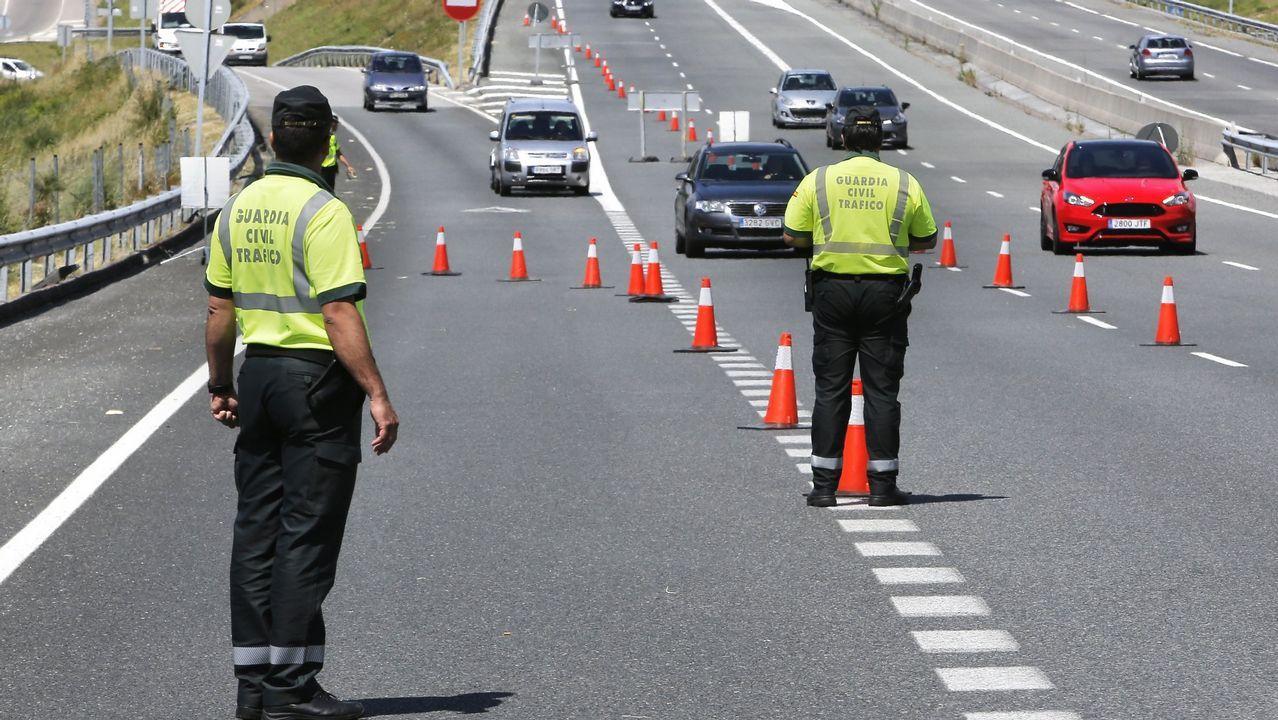 Agresión en Sanxenxo: «Nos gritó 'Putas, oléis a regla que apesta'».Los jabalíes causan tres de cada cuatro accidentes de tráfico con animales