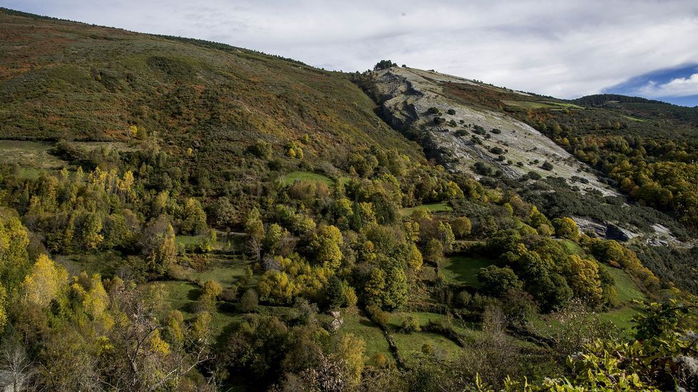 Vegetación en torno a un afloramiento de roca caliza en el monte de Taro Branco