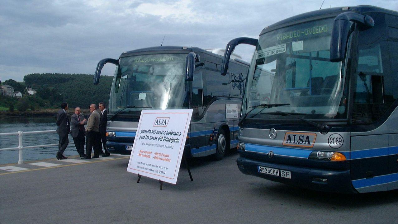perro playa.Los nuevos autobuses promocionales de los centenarios de Covadonga 2018