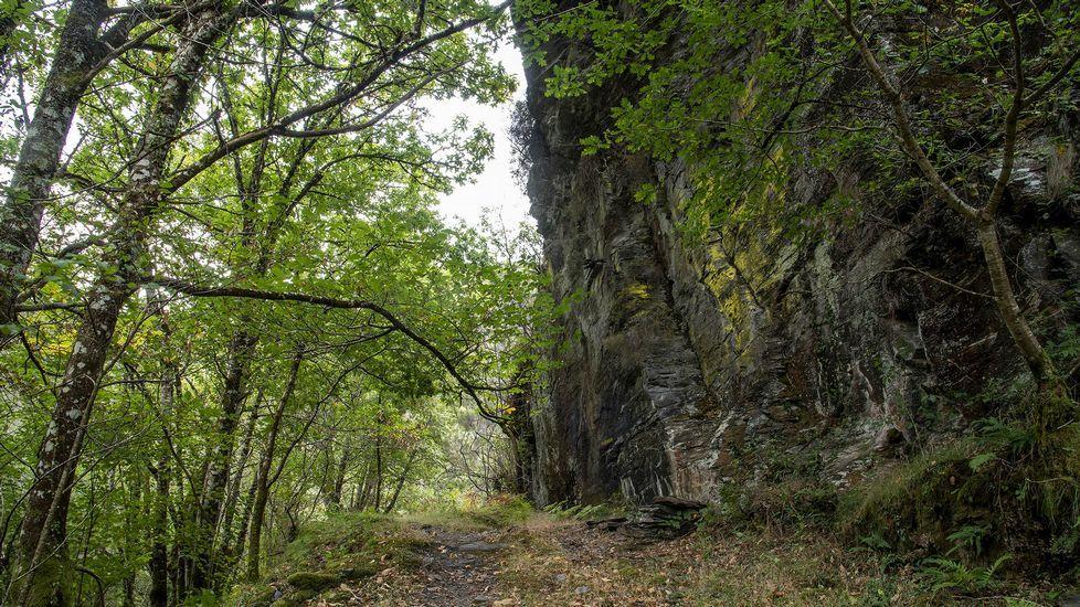 Un tramo del camino en el entorno de la aldea de Lousadela