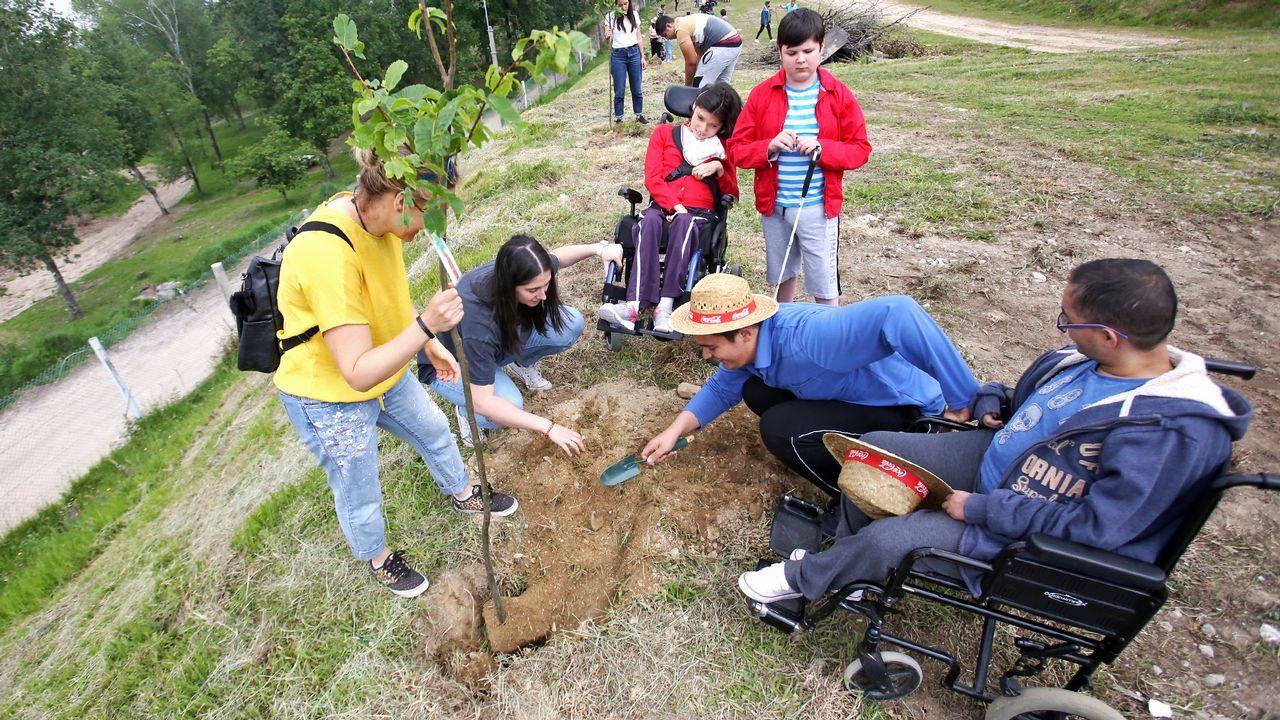 Mos gana nuevos árboles gracias a Voz Natura