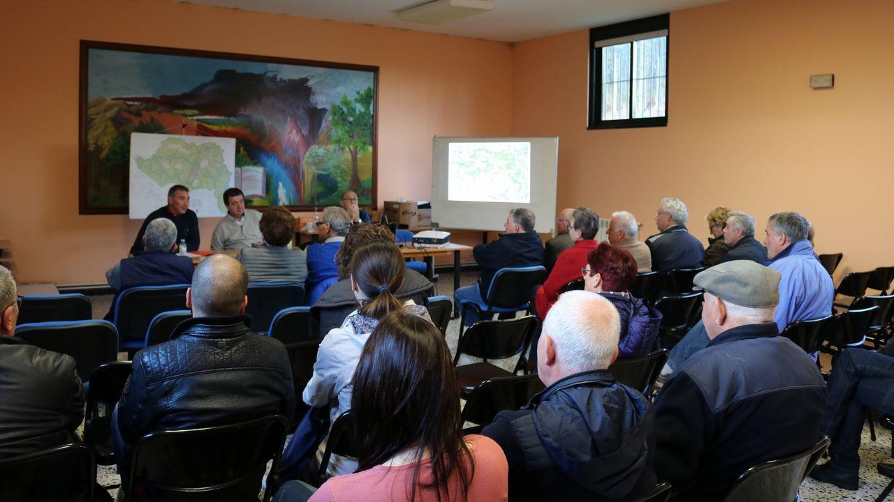 Intervención de los bomberos en la Ería, Oviedo