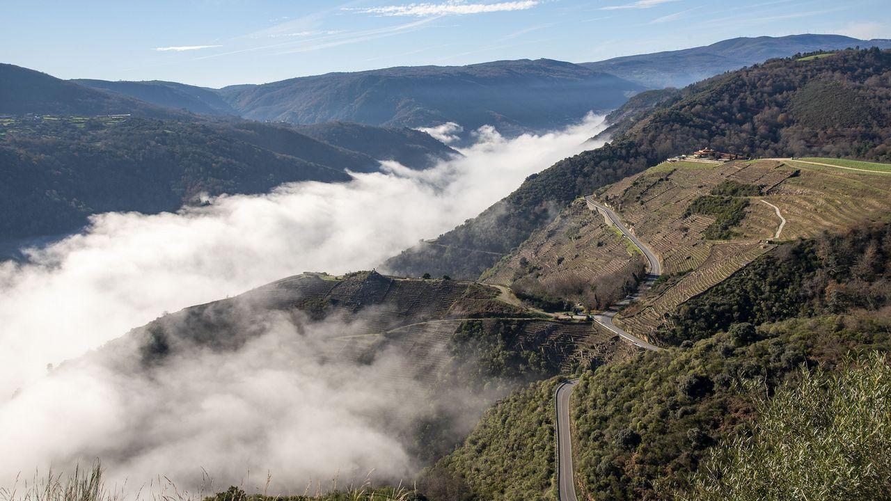 El cañón del Sil cubierto de niebla