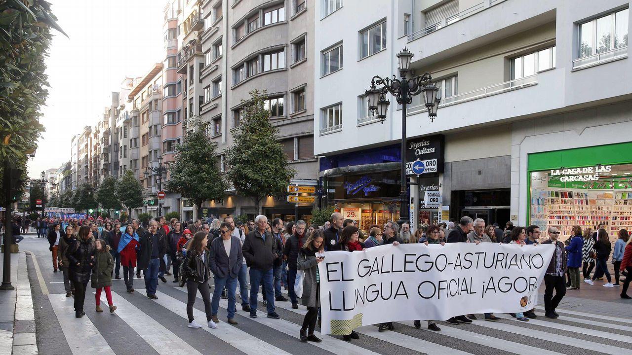 os defensores de la cooficialidad del asturiano han vuelto a manifestarse hoy por las calles de Oviedo para reclamar que la necesaria reforma del Estatuto de Autonomía para llevarla a cabo se ponga en marcha en la actual legislatura