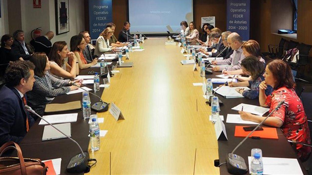 El comité de seguimiento del programa operativo del Fondo Europeo de Desarrollo Regional (Feder) 2014-2020