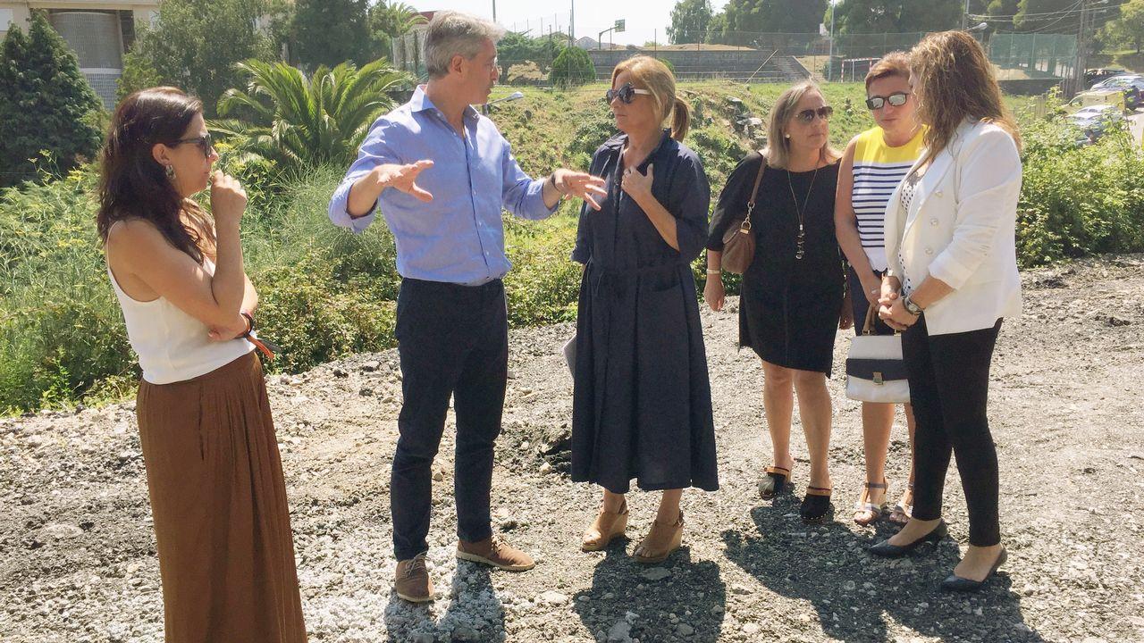 Tres nuevos embalses a un paso de Galicia.Biomasa forestal en As Pontes