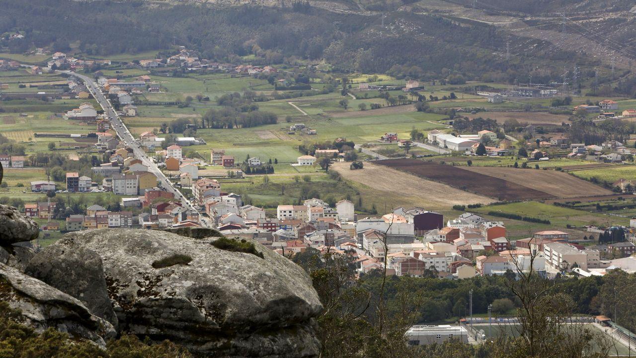 Fue la edición más exitosa.Un ejemplar de lobo fotografiado en el concello coruñés de Dumbría
