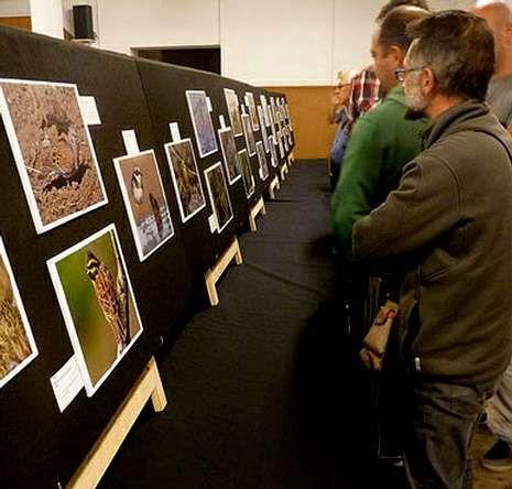 Los niños disfrutaron con la sesión de anillamiento de Pablo Pita, tras ver la exposición de fotografías.