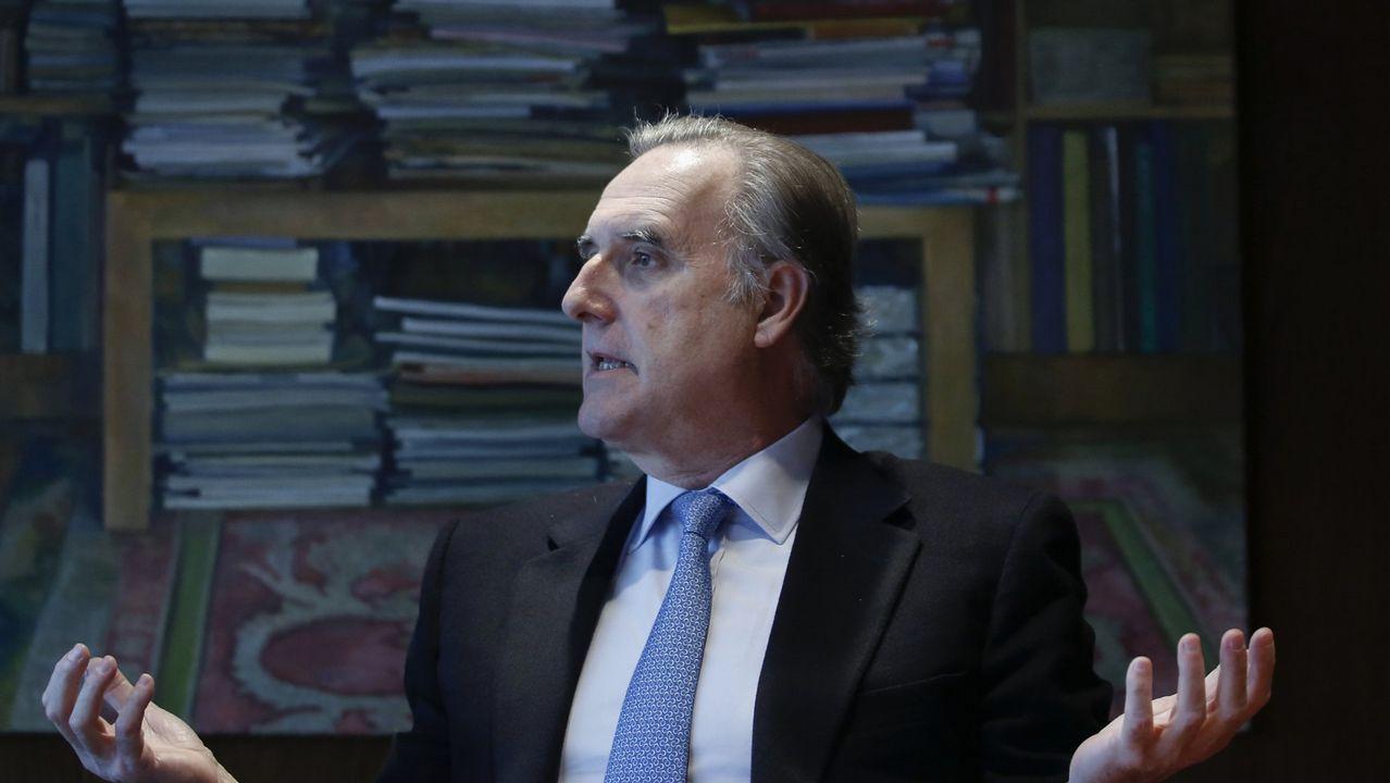 Francisco Calvo Serraller