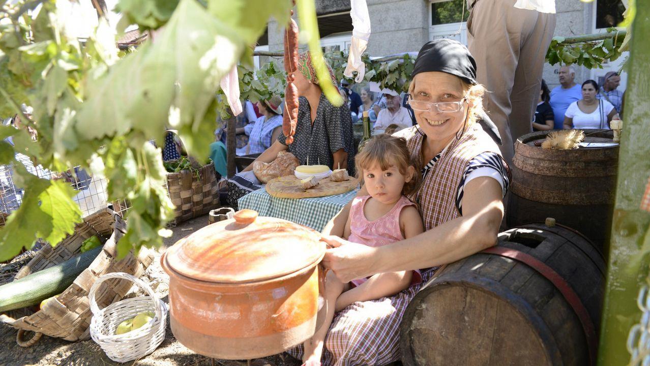 La lluvia y el granizo obligan a adelantar la vendimia para evitar enfermedades