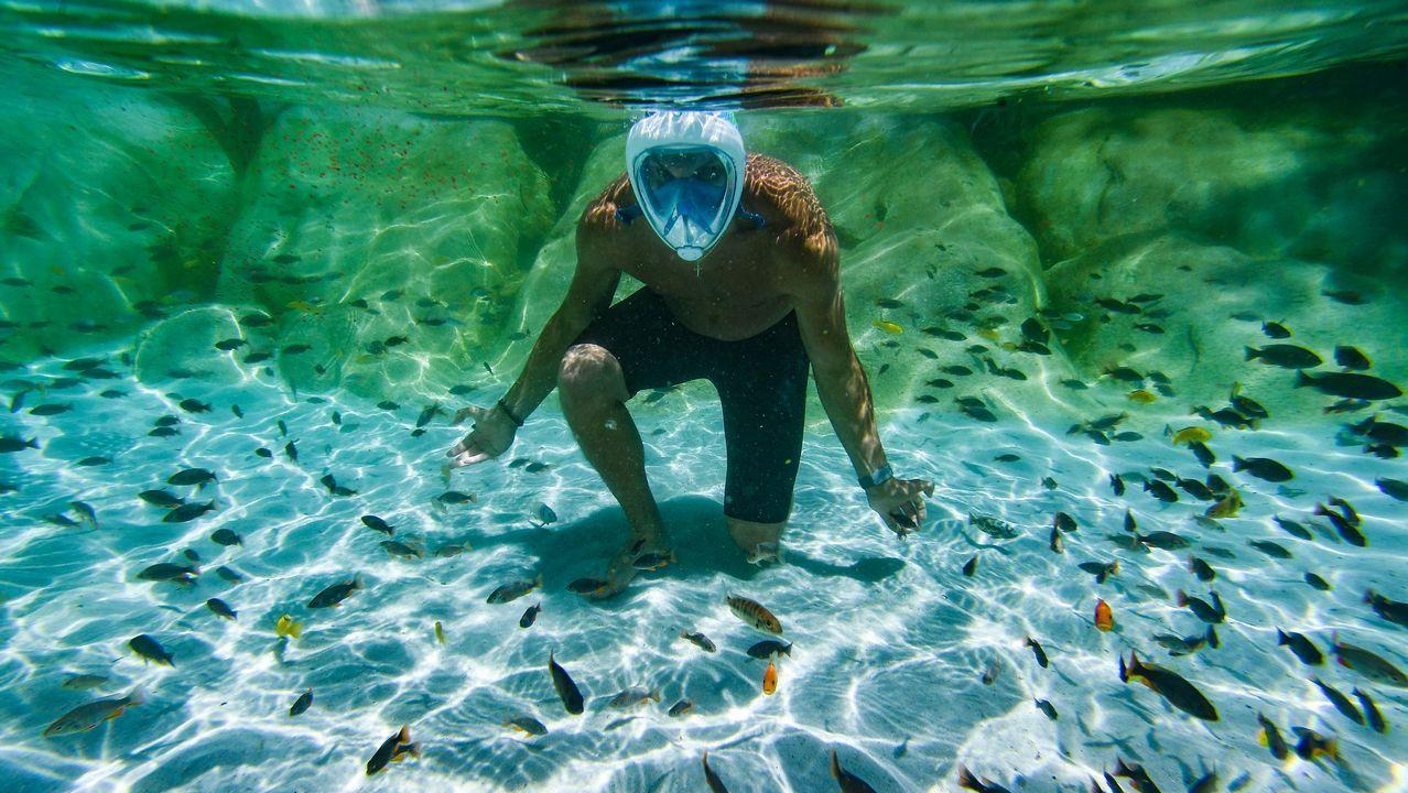.Un turista se sumerge en una piscina con peces tropicales en Cumiana, cerca de Turín