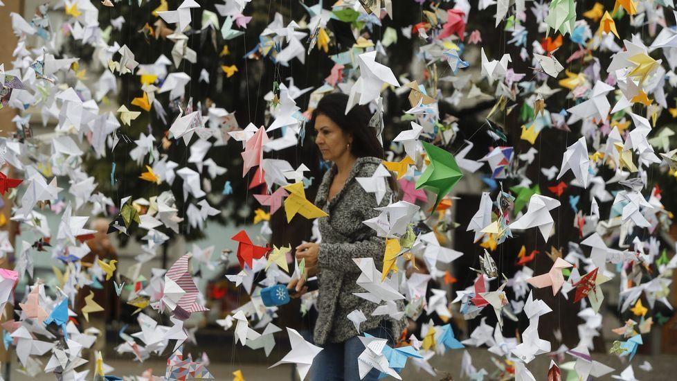 Miles de pajaritas de papel vuelan al Congreso en defensa de Doñana.Cambia o chip e pide os Reis Magos unha excursión polo campo con quen ti queiras