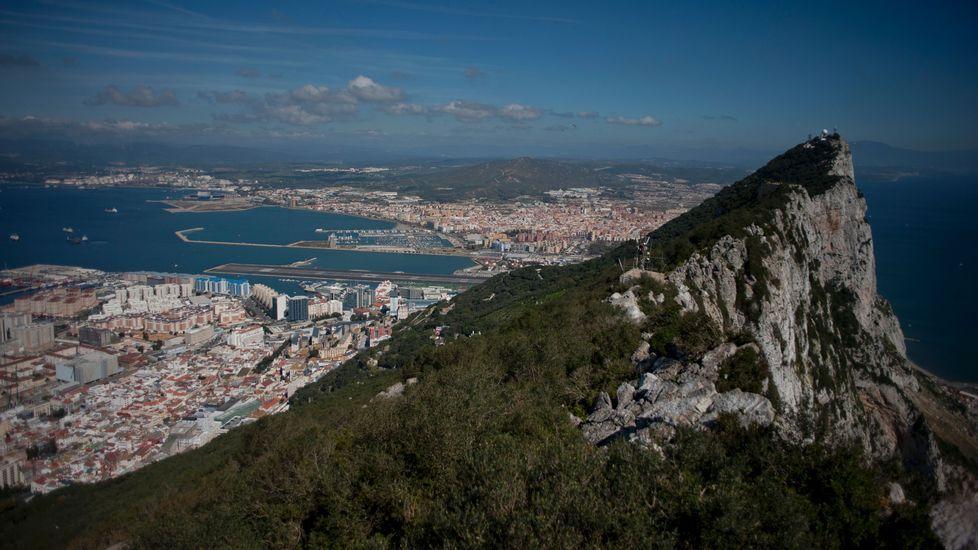 Una san bernardo de campeonato.Peñón de Gibraltar