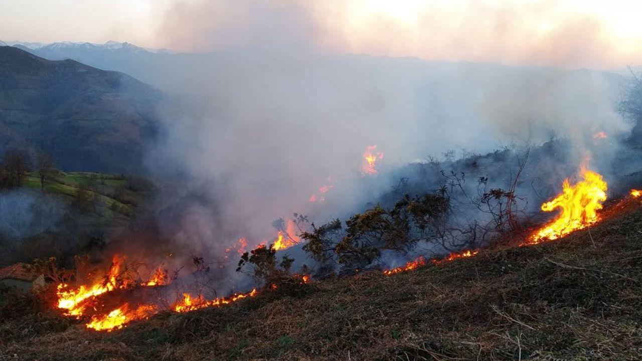 La noche se abre en cien fuegos.Imagen de un incendio en Asturias