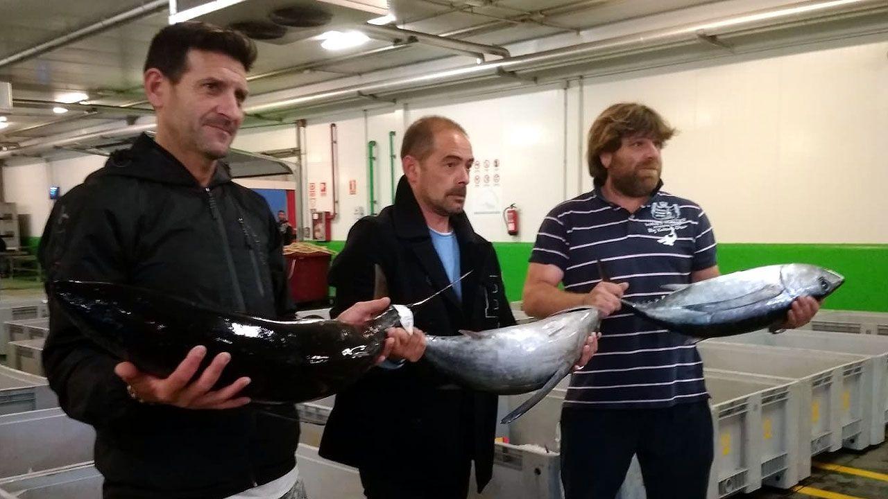 Armando Prendes, entre Juan José Baranda y Fidel Álvarez, con los primeros bonitos llegados a Asturias