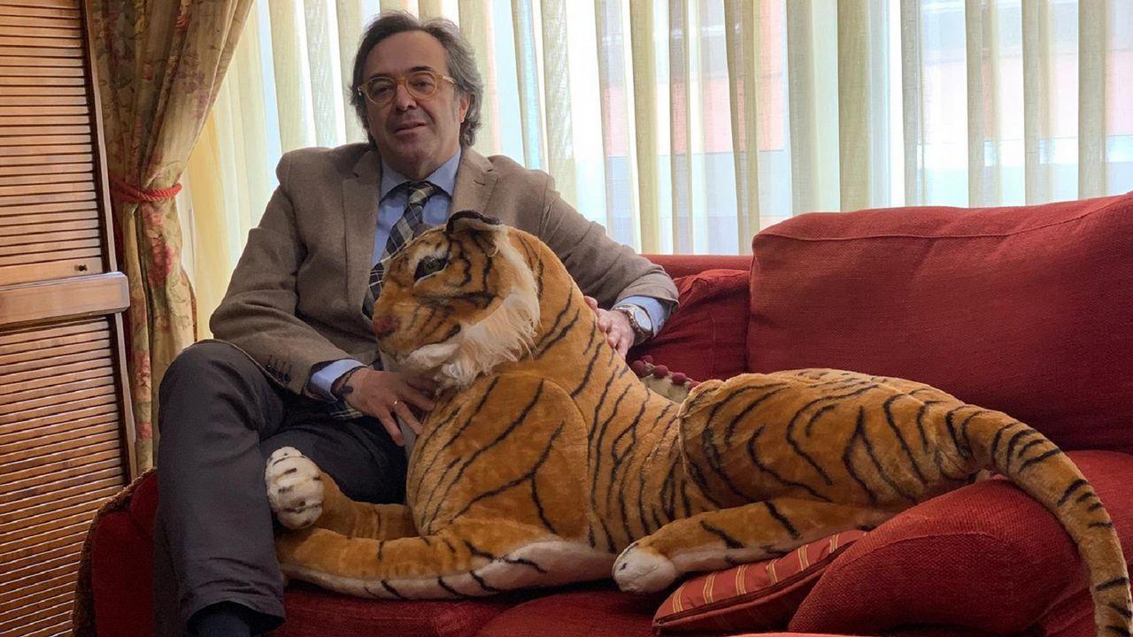 Daniel Formoso suele acudir a los cursos acompñado de «Canguelo», un tigre de peluche que representa el miedo escénico