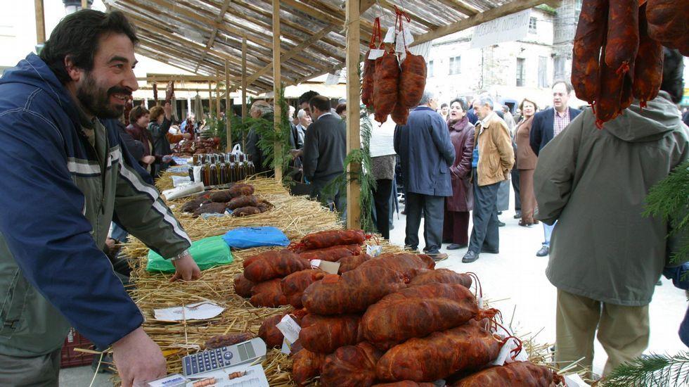 No, las cigüeñas no pasan todo el año en Galicia