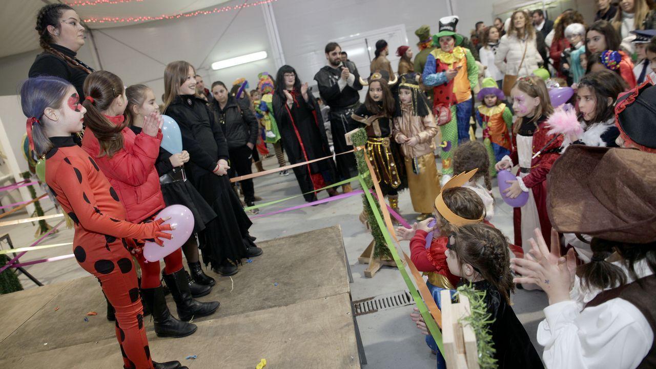 ¡Búscate en nuestras imágenes del carnaval barbanzano!.